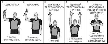 Правила баскетбола жесты судей в баскетболе