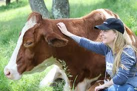 Kathleen Prasad's Animal <b>Reiki</b> Source   Energy Healing for Animals
