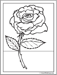 590x762 73 rose coloring pages customize pdf printables