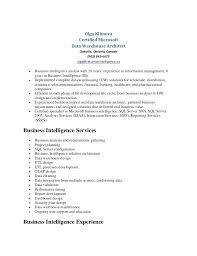 Data Warehouse Resume Sample Resume Bank