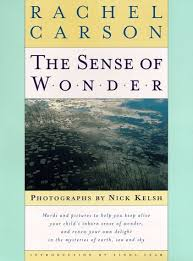 introduction to the sense of wonder by rachel carson linda lear