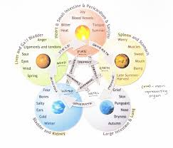 Chinese Medicine Five Elements Chart Five Element Chart Jj Lassberg Create Market Cook Collage