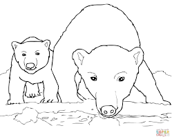 Curious Polar Bear Mother and Cub coloring page | Free Printable ...