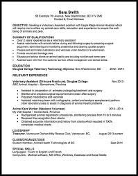 Care Worker Resume Animal Care Worker Skills For Resume Mt Home Arts