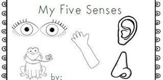 5 Senses Coloring Pages Design And Ideas Page 0 Luxalobeautysorg