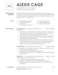 Summary Resume Example Professional Resume Samples For Every Industry My Perfect