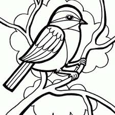 Small Picture An Owl Bird Flying Seeking for Prey Coloring Page Color Luna