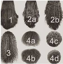 Andre Walker Hair Chart Know Your Hair Type Iseehair