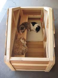 amusing small cat house plans frugal and homemade winter for stray