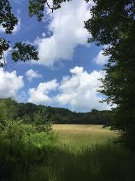 Effie L. Berry Conservation Area — Kennebec Land Trust