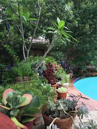 Small Picture MUST SEE The Corner Of My Backyard Gets A Design Refresh From At