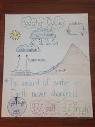 Water Cycle Anchor Chart Science Anchor Charts Science