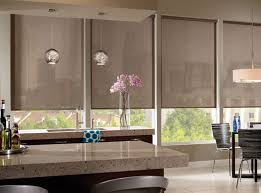 Roller Shades - Roller Shades, Blackout Shades, Black Out Shades, contemporary  roller blinds