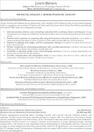 Resume For Financial Analyst Enchanting It Analyst Sample Resume Colbroco