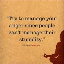 Anger Quotes Fascinating Try To Manage Your Anger Since People Can't Manage Their Stupidity