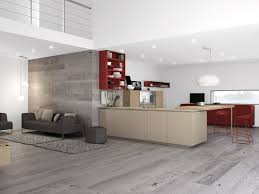 Red And Grey Kitchen Designs Gray Kitchen With Red Accents 15575520170519 Ponyiexnet