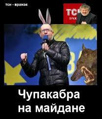 Сепаратизм на Донбассе финансируют сыновья Януковича и Азарова, - Геращенко - Цензор.НЕТ 3092