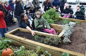 Small Picture special needs gardening Google Search Dream School Pinterest