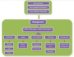 Doctor S Office Organizational Chart System Analysis And Design Case Study New Century Health