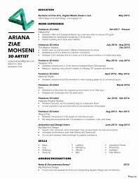 Examples Of Combination Resumes Combination Resume Template Word Awesome Hybrid Resume Template Word 29