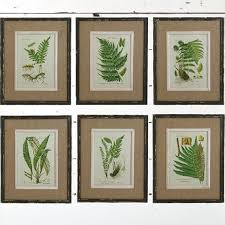 fern botanical prints framed wall art set of 6 on wall art prints framed with fern botanical prints framed wall art set of 6 antique farmhouse