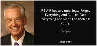 Zig Ziglar Quotes Enchanting TOP 48 QUOTES BY ZIG ZIGLAR Of 48 AZ Quotes