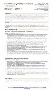 Business Analyst Project Manager - eCommerce Resume Sample