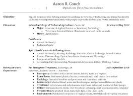 Example Of The Perfect Resume