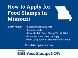 Missouri Medicaid Eligibility Chart How To Apply For Food Stamps In Missouri Food Stamps Now