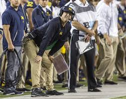 Stunning Jim Harbaugh Coaching Resume Gallery Example Resume And