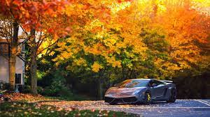 5 Amazing Sports Cars Wallpapers - Free ...