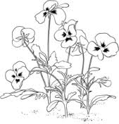 Small Picture Flowers coloring pages Free Coloring Pages