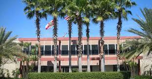 university of south florida niche