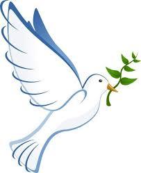 Pin de Ronda Carney em bancos praia   Pomba da paz, Arte, Paz