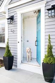 blue front doorBlue Front Door Design Ideas