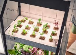 ikea hydroponic grow kit greenery and