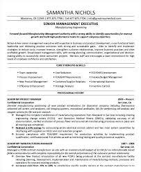 Senior Management Cv Template Executive Management Sample