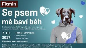 Vše O Psech Dogs Magazín