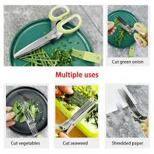 First quarter sales❐۩▥Minced 5 Layers Chopped Laver tool cut Spices Rosemary  Cook Basil Kitchen Shre   Shopee Philippines