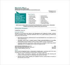 Sample Hr Professional Consultant Resume Consultant Resume Format Emelcotest Com