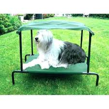 Outdoor Wicker Dog Bed With Canopy Outdoor Dog Bed Outdoor Dog Bed ...