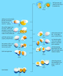 Egg Cooking Chart Theres More Than One Way To Cook An Egg Dave Arnold Has 11