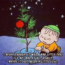 Charlie Brown Christmas Quotes New 48 Best Charlie Brown Christmas Images On Pinterest Charlie Brown