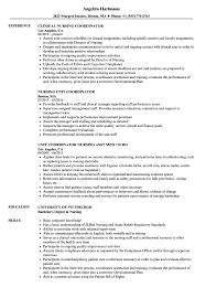 Coordinator Nursing Resume Samples Velvet Jobs