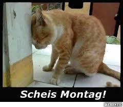 Scheiss Montag Lustige Bilder Sprüche Witze Echt Lustig