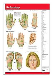 Reflexology Pressure Points Chart Amazon Com Acupuncture Points Chart Guide Reflexology Chart
