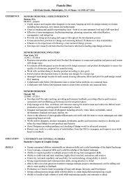 Senior Designer Resumes Senior Designer Resume Samples Velvet Jobs