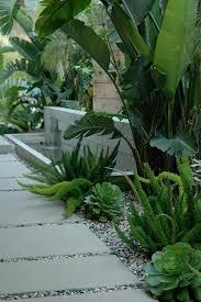 Small Picture 84 best jardin mditerranen images on Pinterest Plants Gardens