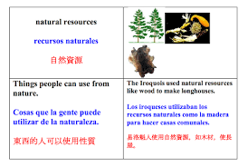 Frayer Frames Use Multilingual And Visual Guides For Vocabulary Udl For