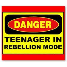 the myth of teenage rebellion